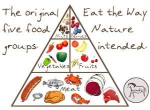 The-Original-Five-Food-Groups-New-Pyramid